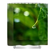 One Drop In The Bigger Picture Shower Curtain