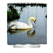One Foot At Ease Swan Shower Curtain