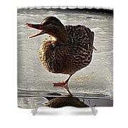 One-legged Duck Shower Curtain