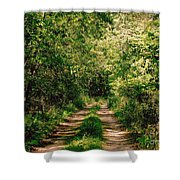 One Lonely Path Shower Curtain