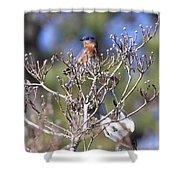 One More Berry Shower Curtain