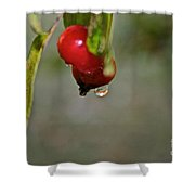 One More Drip Shower Curtain