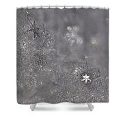 One Shining Snowflake Shower Curtain