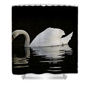 One Swan Shower Curtain
