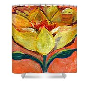 One Yellow Flower And Pinky Peach Behind Shower Curtain