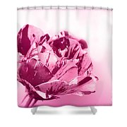 Only A Rose Shower Curtain