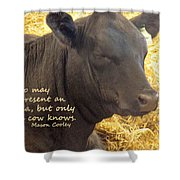 Only Cows Know Shower Curtain