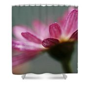 Open Hands Shower Curtain