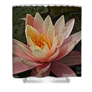 Open To Possibilities Shower Curtain