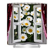 Open Windows Onto Large Daisies Shower Curtain
