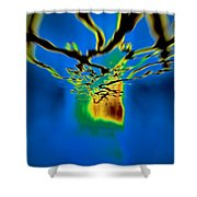 Optic Nerve Shower Curtain