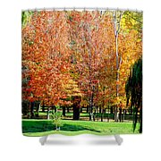 Orange Colored Trees Shower Curtain