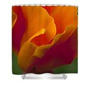 Orange Corolla Shower Curtain