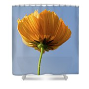 Orange Cosmos Too Shower Curtain