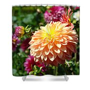 Orange Dahlia Flower Floral Fine Art Photography Shower Curtain by Baslee Troutman