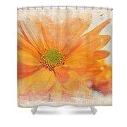Orange Daisy Shower Curtain