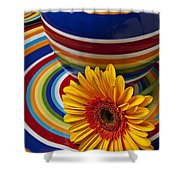 Orange Daisy With Plate And Vase Shower Curtain