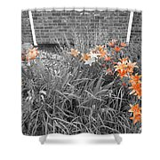 Orange Day Lilies. Shower Curtain by Ausra Huntington nee Paulauskaite