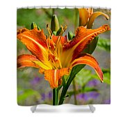 Orange Day Lily Shower Curtain