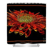 Orange Gerbera Daisy With Chrome Effect Shower Curtain
