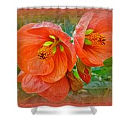 Orange Hibiscus Flowers Shower Curtain