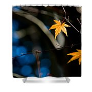Orange Leaf On A Tree In Winter Setting Shower Curtain
