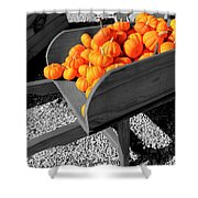 Orange Pumpkin Harvest Shower Curtain