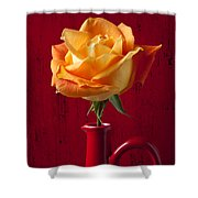 Orange Rose In Red Pitcher Shower Curtain