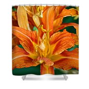 Orange Ruffles Shower Curtain