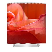 Orange Sensation Shower Curtain