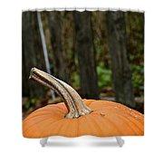 Orange Top Shower Curtain