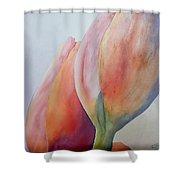 Orange Tulips I Shower Curtain