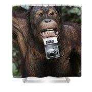 Orangutan With Tourists Camera Shower Curtain