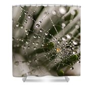 Orbiting The Web Shower Curtain