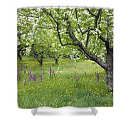 Orchard With Flowering Orchids Shower Curtain