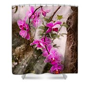 Orchid - Tropical Passion Shower Curtain