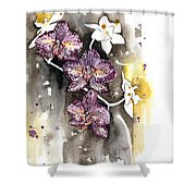 Orchid 13 Elena Yakubovich Shower Curtain