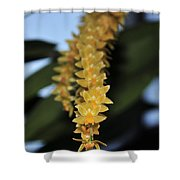 Orchid 908 Shower Curtain