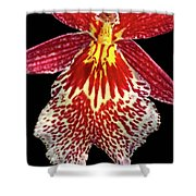 Orchid Hybrid Shower Curtain