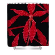 Orchid Renanthera Bella An Endangered Shower Curtain