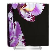Orchid Stem Shower Curtain