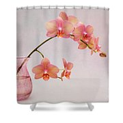 Orchids In A Pink Vase Shower Curtain