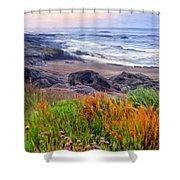 Oregon Coast Wildflowers Shower Curtain
