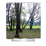 Oregon Sheep Farm Shower Curtain