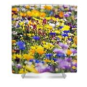 Oregon Wildflowers Shower Curtain
