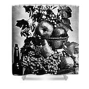 Oregon: Wine & Grapes Shower Curtain