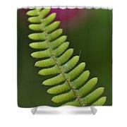 Ornamental Fern Shower Curtain