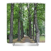 Oslo Trees Shower Curtain