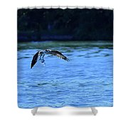 Osprey Environmentalist Shower Curtain