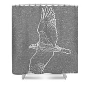 Osprey In Flight Embossed Shower Curtain
